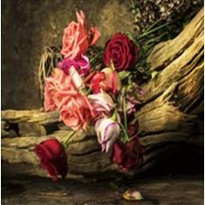 Κάδρο Σε Καμβά 773930 Λουλούδια 60x60x2,5εκ