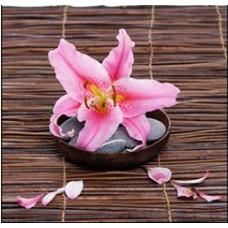 Κάδρο Ξύλινο Καμβάς 786848 Ροζ Λουλούδι 39x56x2,5εκ